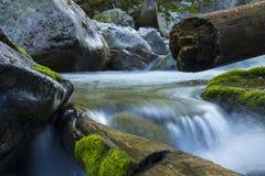 Słowacka rzeka 2012 Obraz Royalty Free