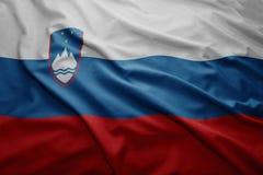 Słowenia bandery Zdjęcie Royalty Free