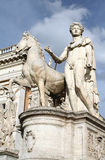 S P Q R-Pollux standbeeld-I-Rome Royalty-vrije Stock Afbeelding