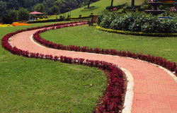 S path in park. S path in  kateri park near ooty, tamilnadu, india Royalty Free Stock Photography