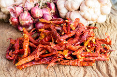 S/poivron rouges chauds secs Image stock