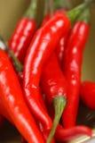 S/poivron rouges dans une cuvette, instruction-macro, DOF peu profond Photo libre de droits