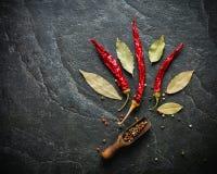 S/poivron sur le fond de colza Fruits secs Goût brûlant aigu Images stock
