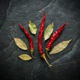 S/poivron sur le fond de colza Fruits secs Goût brûlant aigu Photographie stock