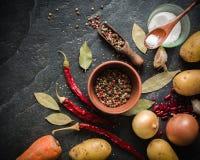 S/poivron sur le fond de colza Fruits secs Goût brûlant aigu Photographie stock libre de droits