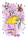 It's raining cats and dogs autumn card. Stock Photo