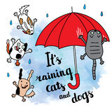 It's raining cats and dogs autumn card. Stock Images