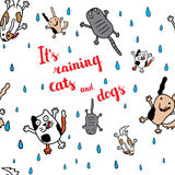 It's raining cats and dogs autumn card. Royalty Free Stock Image