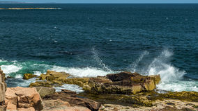 ` S Rocky Coast de Maine Fotografia de Stock