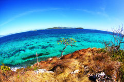 It's a Round World. Fish-eye tropical view of the sea from a cliff on Malcapuya island during summer royalty free stock images