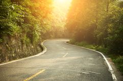 S-shape highway in the forest. At sunrise Royalty Free Stock Photos