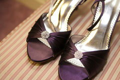 s shoes kvinnan Royaltyfria Foton