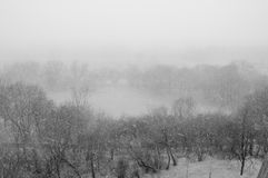 It's snowing!. View of a heavy snowfall Royalty Free Stock Photos