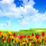It's spring time Stock Images
