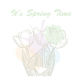 It`s spring time hand drawn lettering typography with tulip flowers and watercolor pastel blots. Vector illustration of Royalty Free Stock Photos