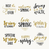 It`s spring time lettering greeting cards set. Vector Special spring sale typography poster in gold black and white colors. vector illustration