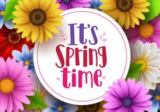 It`s spring time vector greeting background design template. With white space for text and colorful various daisy flowers and elements for spring season. Vector royalty free illustration