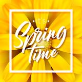It`s spring time vector illustration with beautiful colorful flower on yellow background. Floral design template with. Typography letter for greeting card or Royalty Free Stock Photography