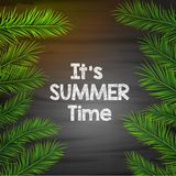 It`s summer time background with palm leaves Royalty Free Stock Photography