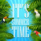 It`s summer time typography wooden background with tropical plants, flowers, palm leaves, parrot and cockatoo. Illustration of It`s summer time typography wooden Stock Photo