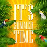 It`s summer time typography wooden background with tropical plants, flowers, palm leaves, parrot and cockatoo. Illustration of It`s summer time typography wooden Royalty Free Stock Image
