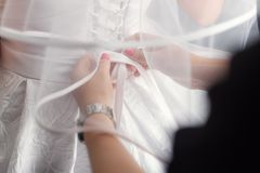 美好的套妇女的和新郎的婚姻的辅助部件 ??` s?? 白色郁金香和蓝色花新娘的花束  T 免版税库存照片