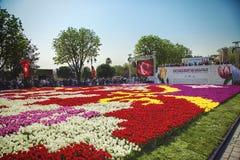` S Tulip Carpet más grande del mundo en Estambul fotografía de archivo