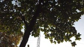 s?upa elektryczny wysoki wolta? zdjęcie wideo