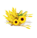 S wheat and sunflower in wicker baskets Stock Photo