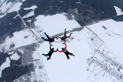Formation skydiving. Four skydivers hold hands each other in the sky. stock images