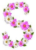 s wiosna Obrazy Royalty Free