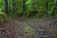 S31 Curve. Train tracks lead off into the dark forest Royalty Free Stock Photos