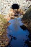 Saída do dreno da tempestade com reflexão da árvore Imagens de Stock Royalty Free
