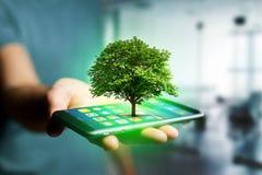 Saída verde de um smartphone - conceito da árvore da ecologia fotos de stock