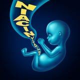 Saúde da gravidez da vitamina B3 da niacina ilustração do vetor