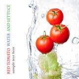 sałata opłukujący pomidory zdjęcia stock