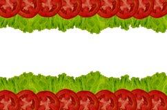 Sałata z pomidor ramą Obraz Stock