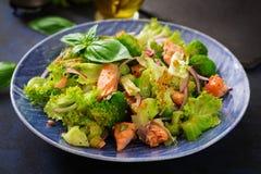Sałatka łosoś, brokuły, sałata i opatrunek stewed rybi, Zdjęcie Royalty Free
