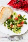 Sałatka świezi warzywa Obraz Royalty Free