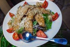 Sałatka z świeżymi warzywami i mięsem Zdjęcia Stock