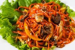 Sałatka z marchewkami, mięsem i zieleniami w talerzu na odosobnionym białym tła zbliżeniu, zdjęcie stock