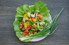 Sałatka z warzywami na bielu talerzu obraz stock