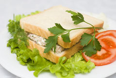 Sałatkowa tuńczyk kanapka Obrazy Stock