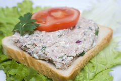Sałatkowa tuńczyk kanapka Obrazy Royalty Free