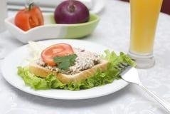 Sałatkowa tuńczyk kanapka Zdjęcie Royalty Free