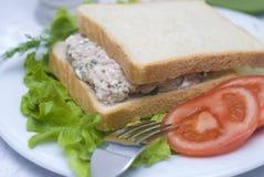 Sałatkowa tuńczyk kanapka Fotografia Stock