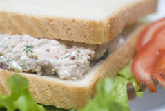 Sałatkowa tuńczyk kanapka Fotografia Royalty Free