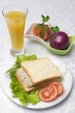 Sałatkowa tuńczyk kanapka Zdjęcia Royalty Free