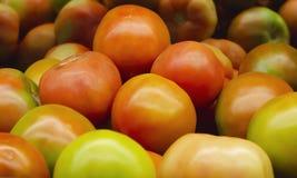 Sałatkowi pomidory brogujący dla sprzedaży detalicznej obrazy royalty free