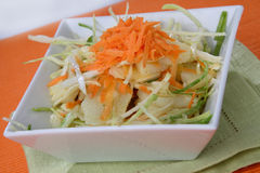 sałatkowy mieszanki warzywo obrazy stock